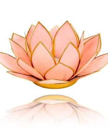 lotus lichtje pastel roze