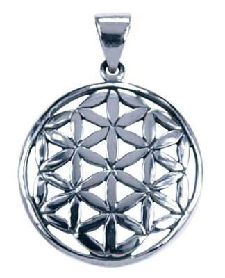Sterling zilveren hanger van de Flower of Life